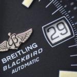 A13050.1 Chronomat Blackbird 50005205