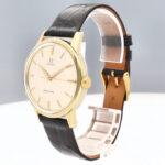 Seamaster Vintage 50042918