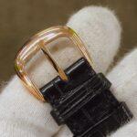 5850 SC T.D Tonneau Curvex Disney Limited Edition 30pcs 50022985